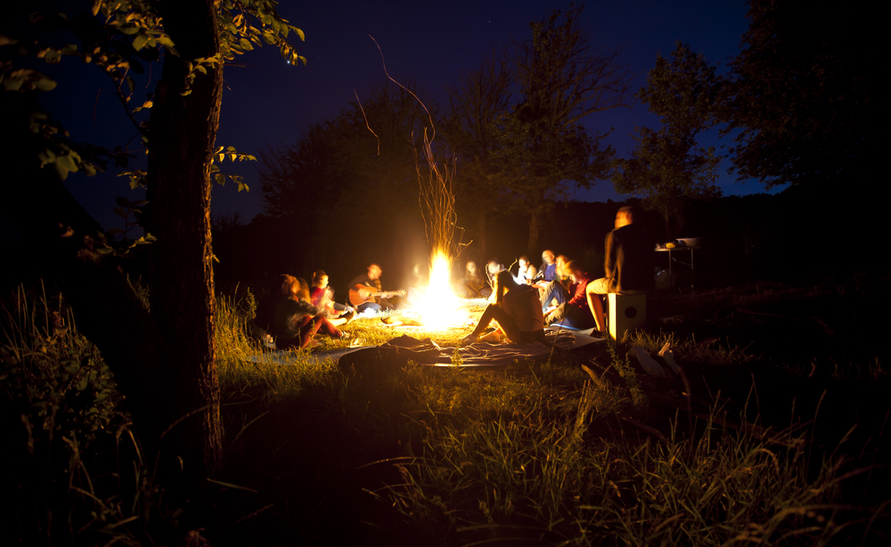 Crafting Stories And Foraging Food course mentored by Fergus Drennan