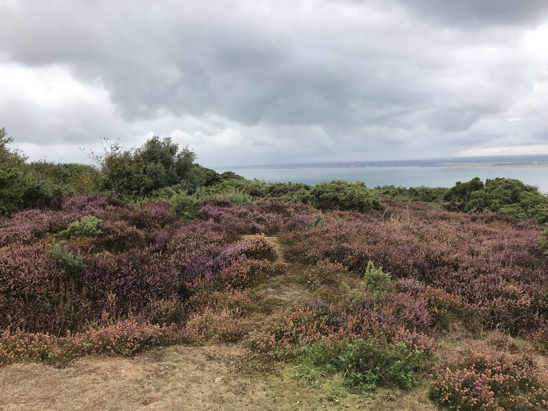 The I Land - a Well-being Pilgrimage walk mentored by Julia Gillick