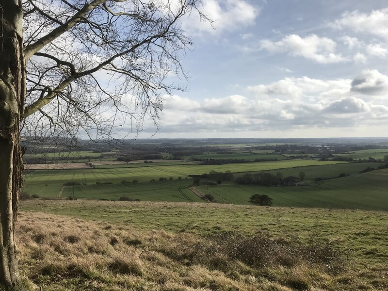 Canterbury Trails - A Well-being Pilgrimage block mentored by Julia Gillick