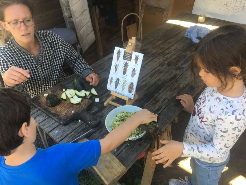 """GROW! """"Grow your own"""" for Kids and MORE block mentored by Emma Goodwin"""