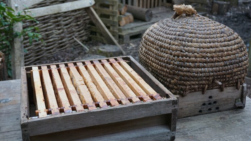 Introduction to Beekeeping  block mentored by Forest Garden Shovelstrode Shovelstrode