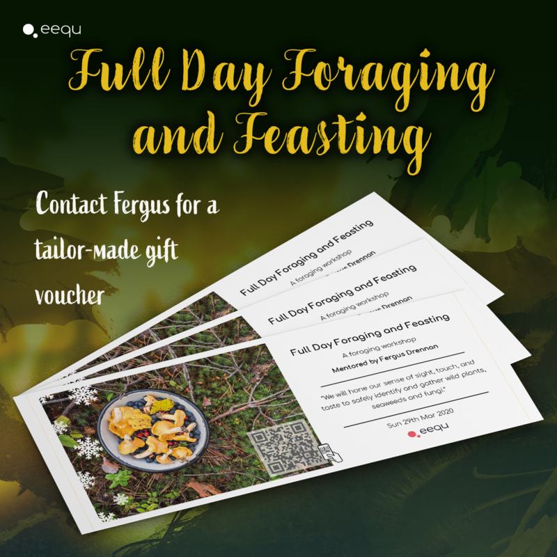 Full Day Foraging and Feasting block mentored by Fergus Drennan