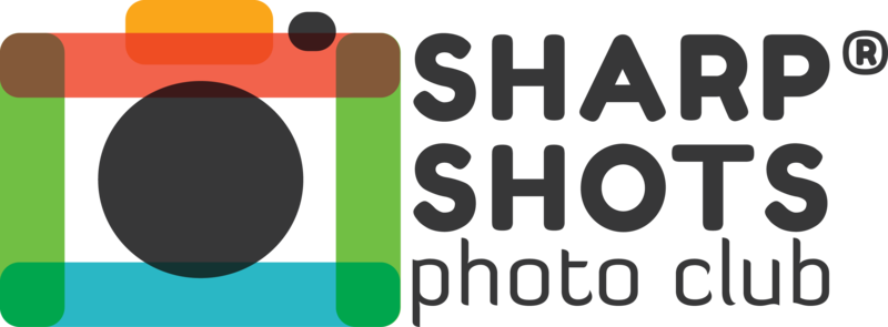Photography course for teens at ONCA Gallery - Sharp Shots Photo Club. block mentored by Mina Milanovic
