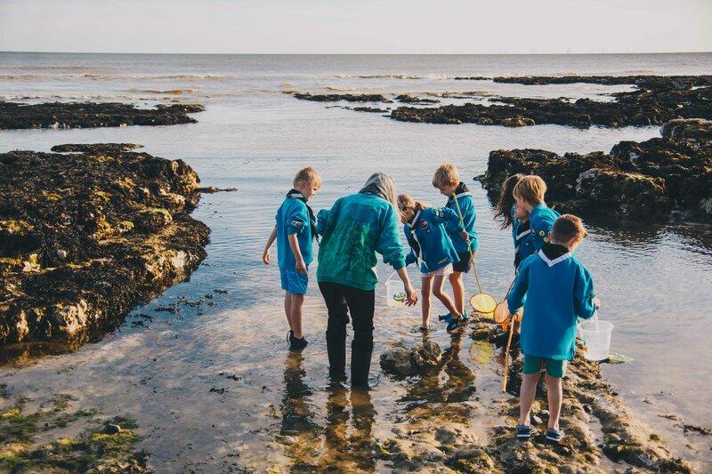 Coastal Marine Environment Project block mentored by Atlanta Cook