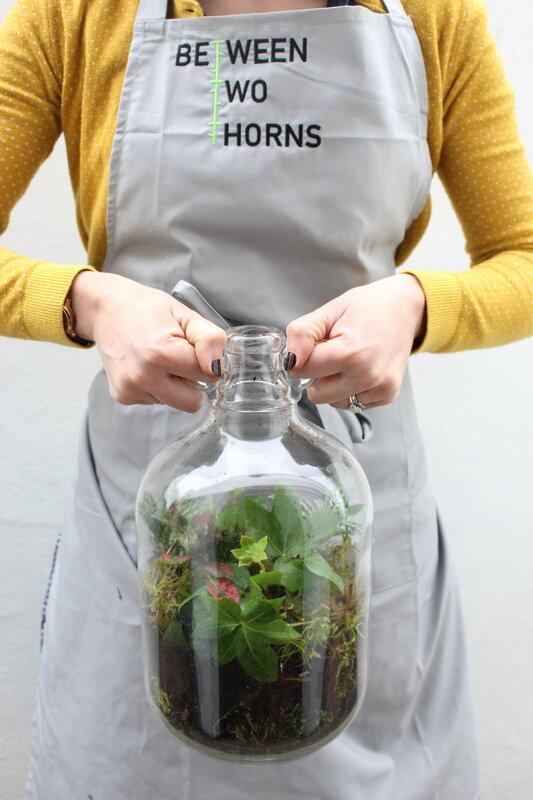 Make your Own Garden in a Bottle block mentored by Alys Dobbie