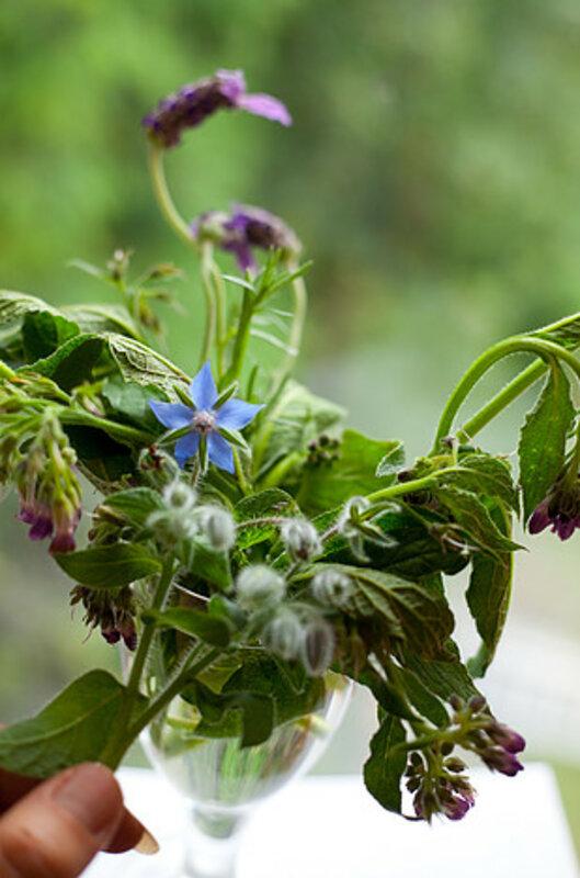 The Wonderful World of Herbs block mentored by Rachael Stevens