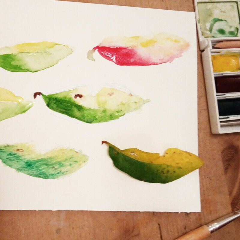 Water Colour Painting Workshop block mentored by Nell Price