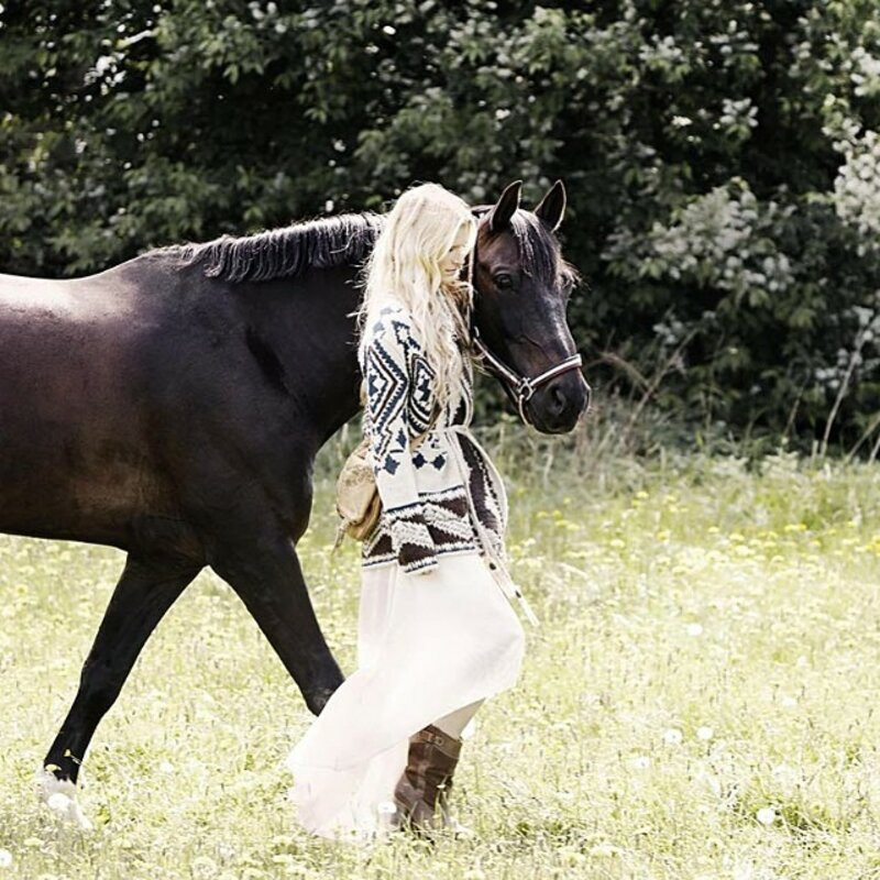 Harmony with horses: caring for horses and yourself block mentored by Linnea Aarflot