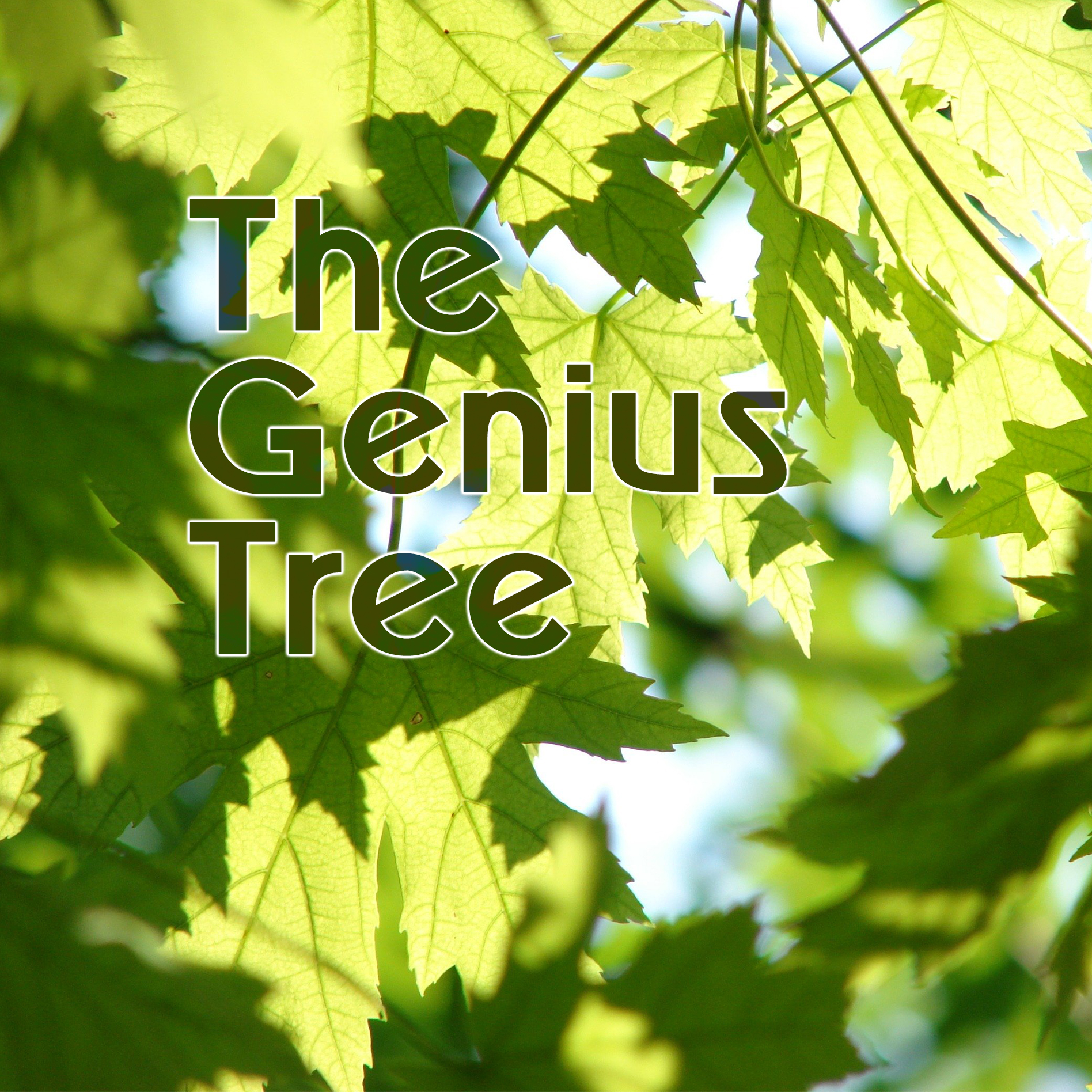 The Genius Tree session mentored by Ian Powell