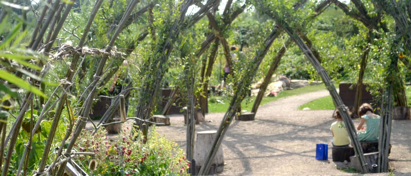 Willow, Harvesting, Planting & Creations camp mentored by Ed Dale-Harris