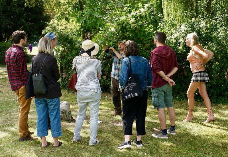 Wild Foods of Stanmer Park, Brighton  block mentored by Fergus Drennan